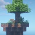 Skyblock Land